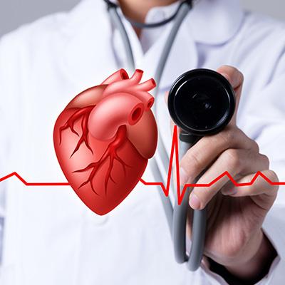 Cardiovascular And Cerebrovascular Medication